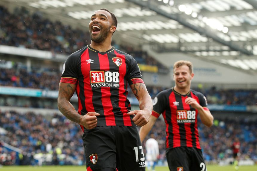 Callum Wilson and Ryan Fraser