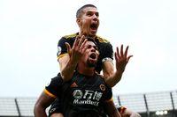 Van Persie: Wolves deserved win at Man City