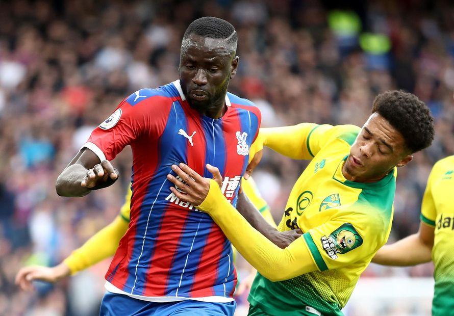Cheikhou Kouyate, Jamal Lewis, Crystal Palace v Norwich City