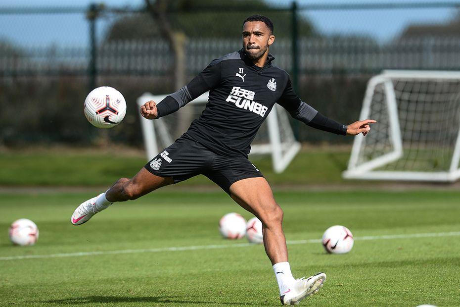 Callum Wilson, Newcastle United
