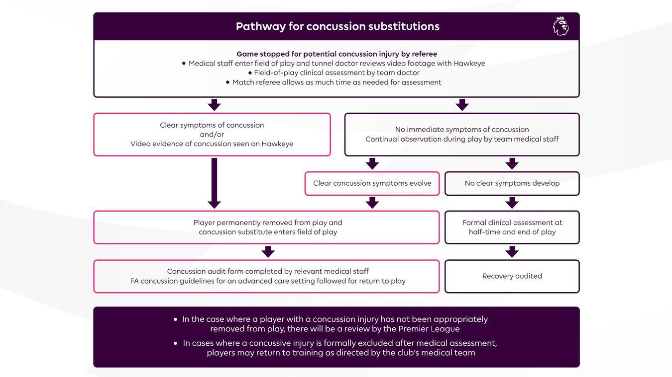 Concussion-Protocol-infographic-V7