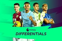 FPL Double Gameweek 24 Differentials