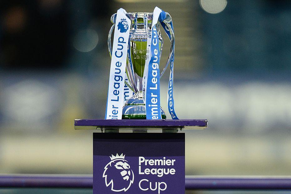 Premier League Cup Trophy