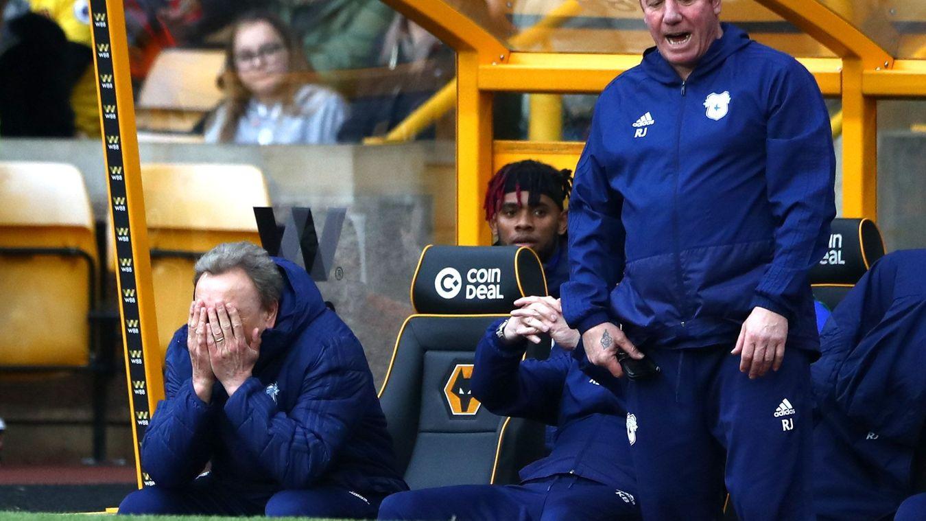 Wolverhampton Wanderers 2-0 Cardiff City