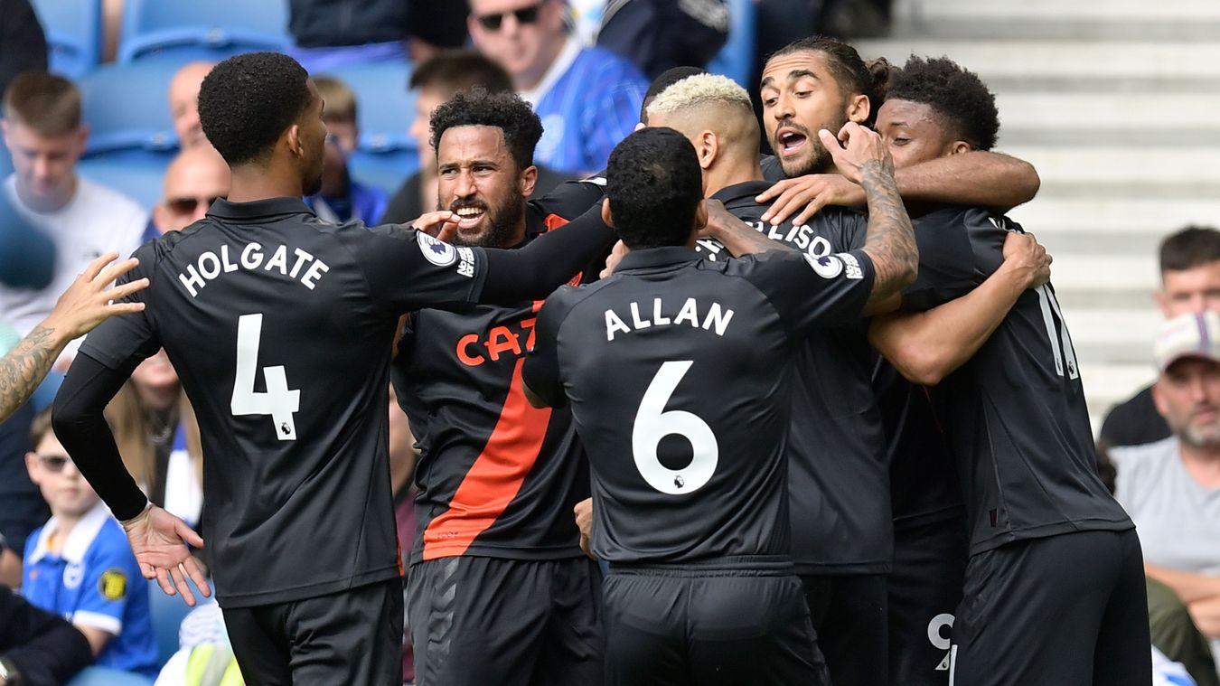 Brighton & Hove Albion 0-2 Everton