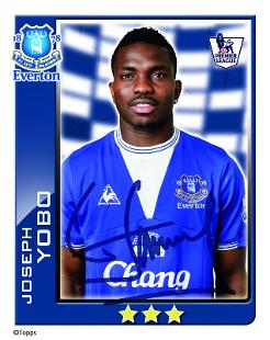 Joseph Yobo Profile, News & Stats | Premier League