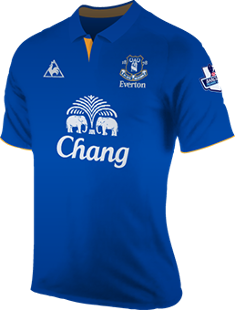 Everton Fc Season History Premier League