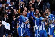 Hoddle: Hughton's got Brighton believing