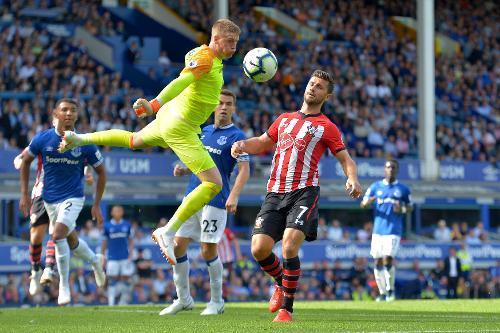 Everton V Southampton 2018 19 Premier League
