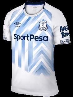Everton Fc Season History Premier League