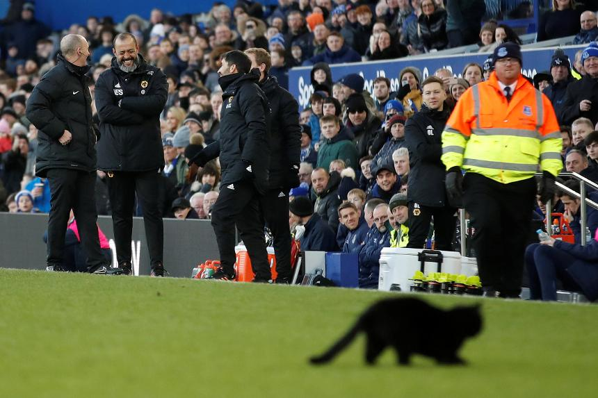 Everton 1-3 Wolverhampton Wanderers